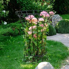 Опоры и шпалеры для сада