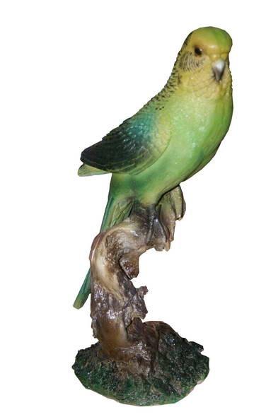 Попугай волнистый F01238 - фото 5112