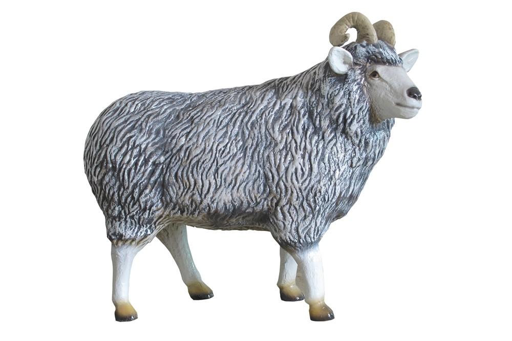 Овца U07498 - фото 5355