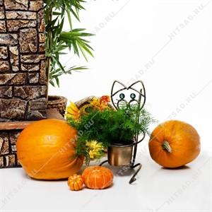 Подставка для цветов Кошка