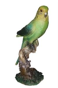 Попугай волнистый F01238