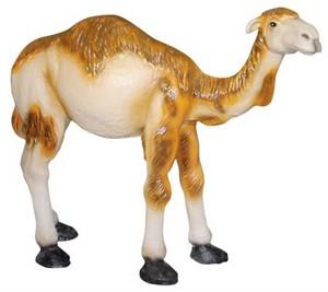 Верблюд F 01052