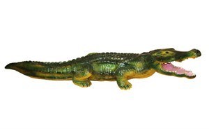 Крокодил F 01040